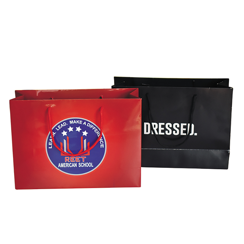 Shopping bag 001